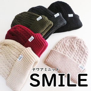 A/W Acrylic Knitted Snow Board Knitted Cap Cable Patch Ladies Men's