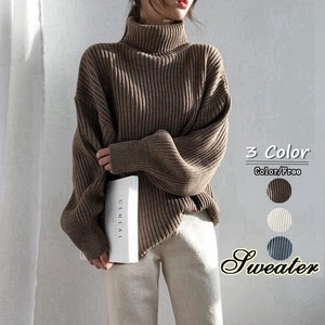 Knitted Body Type Cover Turtle Neck Ladies Sweater Long Sleeve Pullover