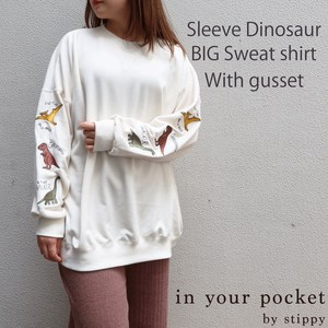Dinosaur Embroidery Attached Big Sweatshirt