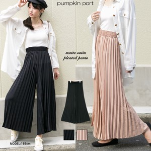Mat Pleats wide pants