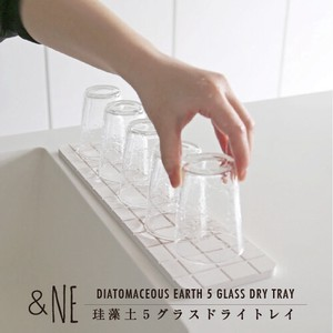 Diatomaceous Earth Glass Dry Tray