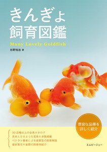 Many Lovely Goldfish