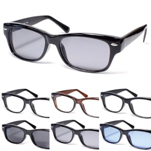 Lower Sunglass Eyeglass