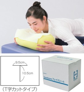 Disposable Face Sheet