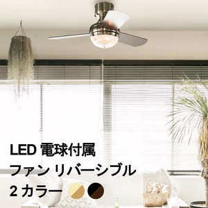 Light Bulb Ring Fan Light