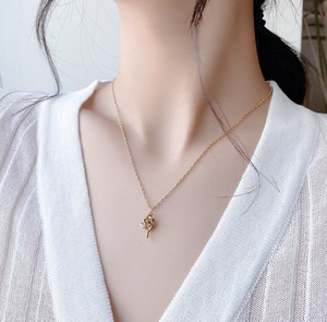 Fashion Accessory Jewelry Necklace Pendant Only Chain