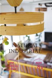 【新商品入荷につき、特別予約キャンペーン】3灯 北欧風 LED シーリングライト 2color