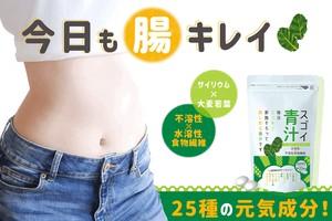 新作「スゴイ青汁」 食品 飲みやすい粒タイプ 国内製造、植物性食物繊維 SUGOI AOJIRU