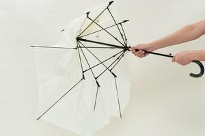傘 ポキッと折れるんです 晴雨兼用傘