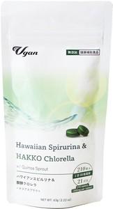 野菜不足に ハワイアンスピルリナ&醗酵クロレラ+キヌアスプラウト 【サプリメント】