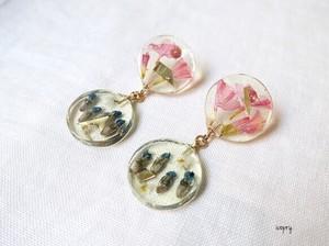 - botanical 2circle - ピアス(pink ×blue)