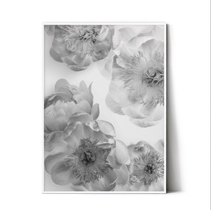 Design Poster Black Scandinavia Botanical
