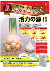 ミラクルニンニク(350粒) 国産無農薬無臭性ジャンボニンニク100%健康食品
