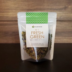 Selling Refreshing Mint Mood Herbal Tea Blend GREEN Fresh Green