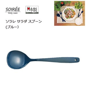 Salad Spoon Blue SO Enamel
