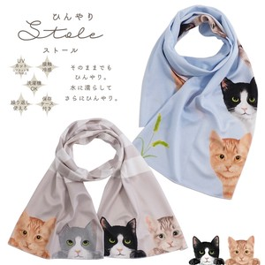 [2021 New Product] S/S Stole cat Cool Cool Stole Cat Countermeasure