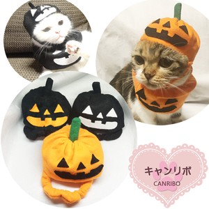 Narikiri Hats & Cap Pumpkin