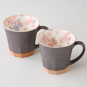 Gift Kohiki Sakura Pair Mag Cups Plates Mino Ware Made in Japan