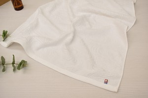 Imabari Bathing Towel Imabari Running Water Towel 20 100
