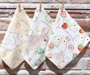 strawberry towelhandkerchief/MIkiTakei    いちごタオルハンカチ/たけいみき