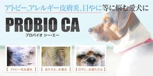 犬の脱ステロイド、黒ずみ、痒み、膿皮症、外耳炎、アトピー、アレルギーに【プロバイオCA】顆粒2g×30包