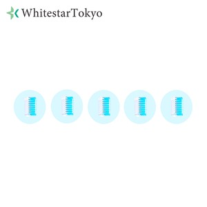 セルフホワイトニング LED電動歯ブラシ専用 <替えブラシ>(5個)