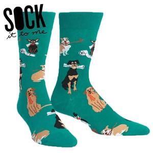 メンズソックス 米国発デザインソックス sock it to me