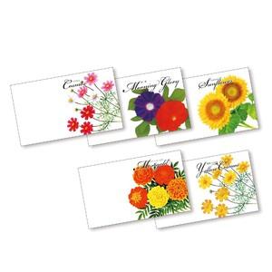横型イラスト花の種子(花夏)