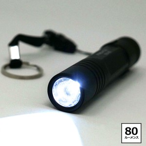 FIRE-FOX 防水LEDライト 白色 単3x1本 FX-57