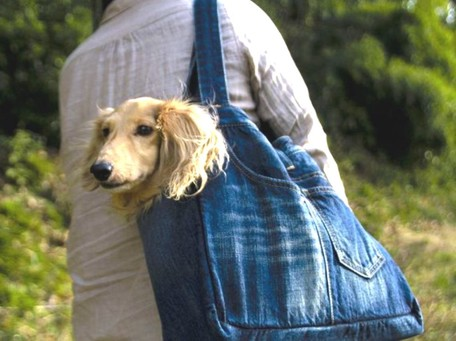 Dog Trolley Bag | Export Japanese products to the world at