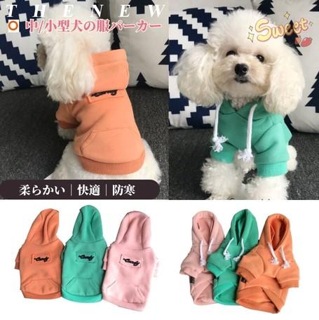 の 洋服 犬